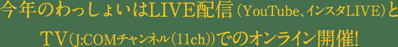 今年の花火はLIVE配信(Youtube、インスタLIVE)とTV(J:COMテレビ)でのオンライン開催!